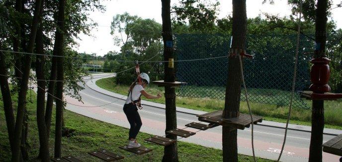 Artykuł: Park Linowy w Elblągu