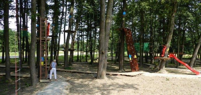 Artykuł: Park Linowy