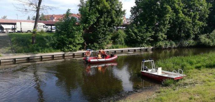 Artykuł: Kolejna udana akcja sprzątania rzeki Pasłęki
