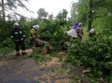 Strażacy usuwali skutki silnego wiatru!