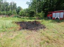 Szybka strażacka interwencja w lesie