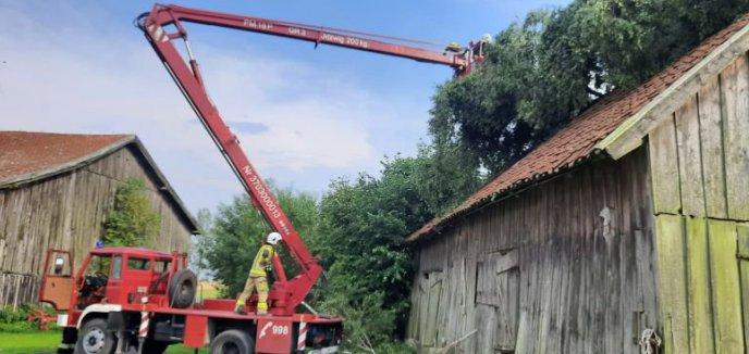 Artykuł: Kolejny atak silnego wiatru - wtorkowe zmagania strażaków