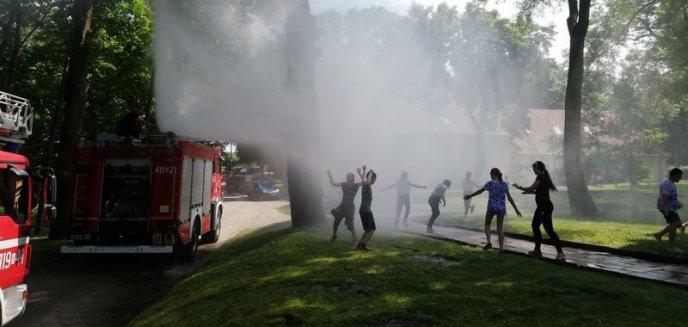Artykuł: Strażacki piknik oraz kolejne spotkanie młodzieży ze strażakami