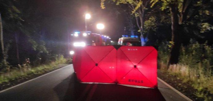 Artykuł: Śmiertelne potrącenie na drodze Bobrowiec-Maciejewo