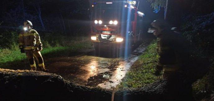 Silnie powiało – pracowita noc braniewskich strażaków!