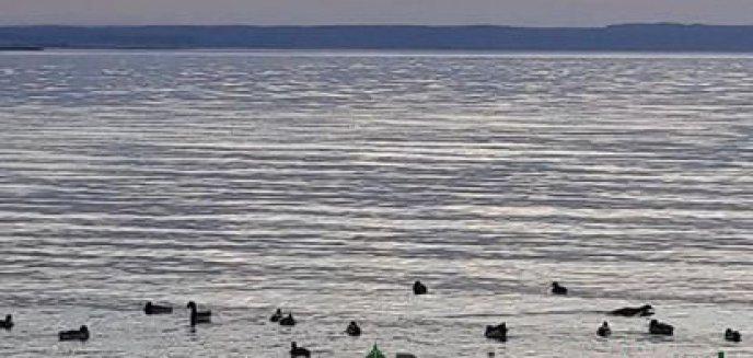 Artykuł: Dyskusja o Zalewie Wiślanym bez głosu z Pomorza? Marszałek Struk pisze do ministra Gróbarczyka